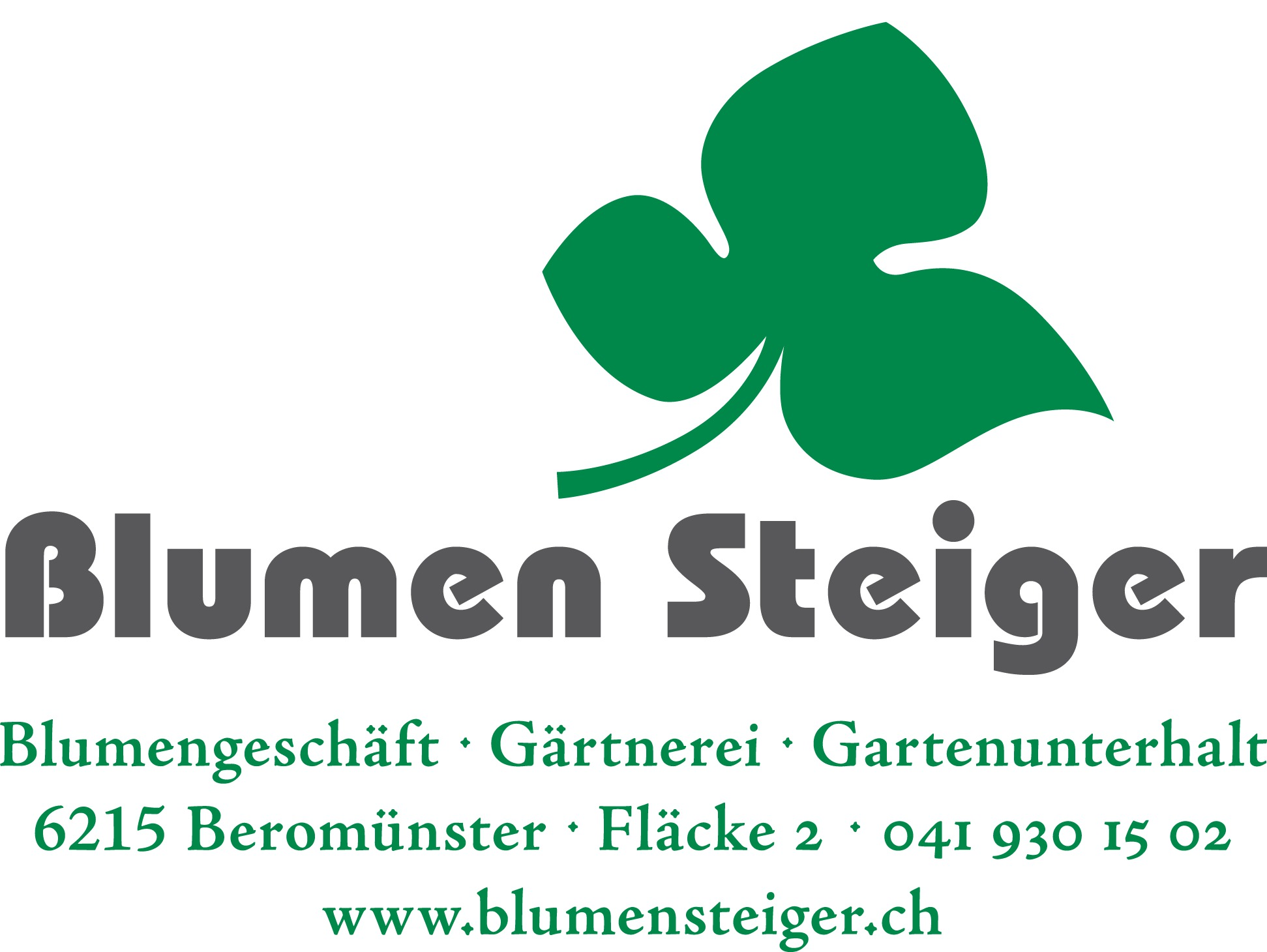 steiger-logo_2016b